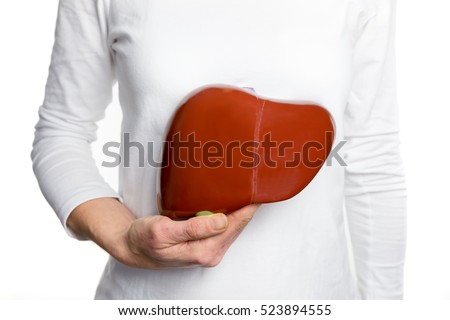 human liver stock images, royalty-free images & vectors | shutterstock, Human Body
