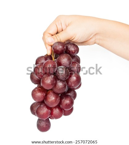 female pick red grapes isolated on white - stock photo