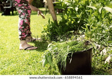 Weeding patio in hot shorts - 2 9