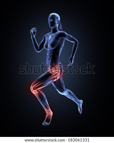 Female runner anatomy - sports medicine illustration - stock photo