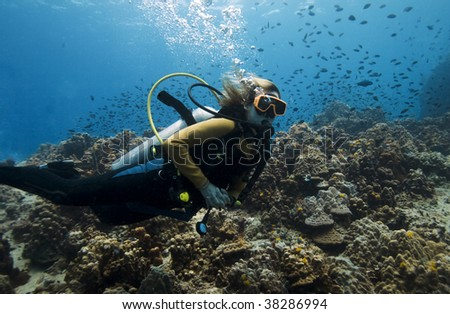 Female scuba diver over a beautiful coral reef in the Gulf of Thailand - stock photo