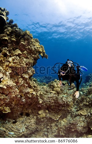 Female Scuba Diver swimming on a Hawaiian Reef - stock photo