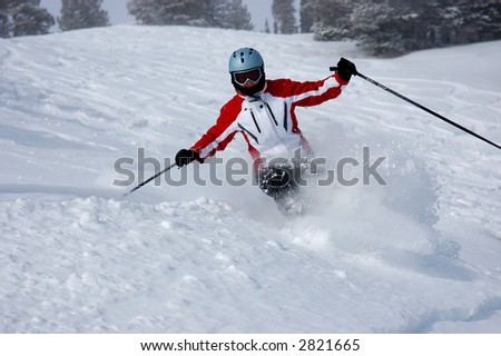 Female skiers - stock photo