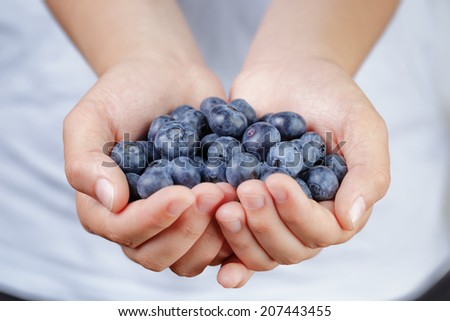 female teen hands holding ripe blueberries, shallow dof - stock photo