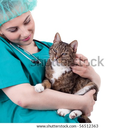 female vet in protective uniform and hat with cat in surgery - stock photo