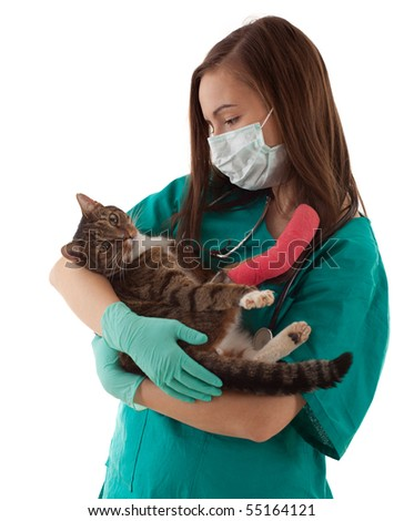 female vet in protective uniform and medical mask with cat in surgery - stock photo