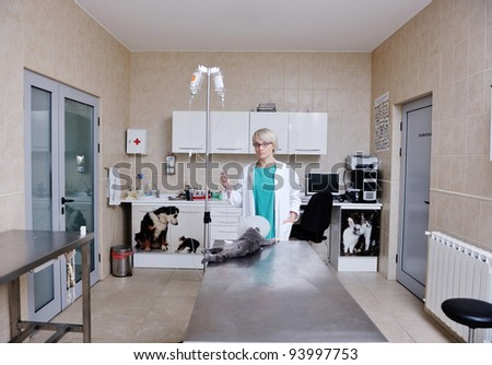 Female veterinary - stock photo
