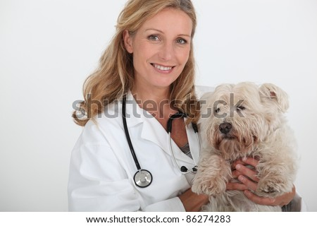 female veterinary and a dog - stock photo