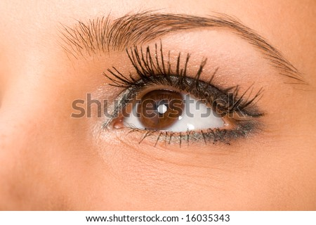 female wide open brown eye with long eyelashes macro