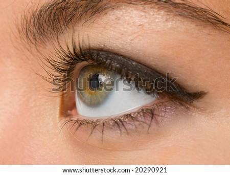 female wide open brown eye with long eyelashes macro - stock photo