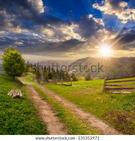 fence and lonely tree near the path through meadow  on the hillside. forest in fog on the far hill and mountain in sunset light - stock photo