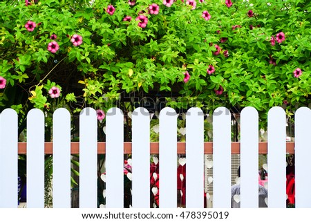 Fence and tree nature background
