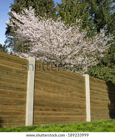 Fence by fruit garden with cherry blossom, safety barrier  - stock photo