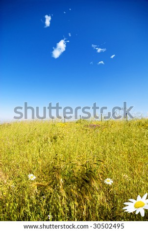 fence in a green field - stock photo