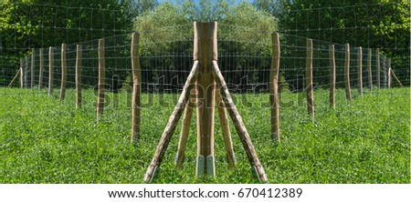 Fence of a pasture for horses or cows