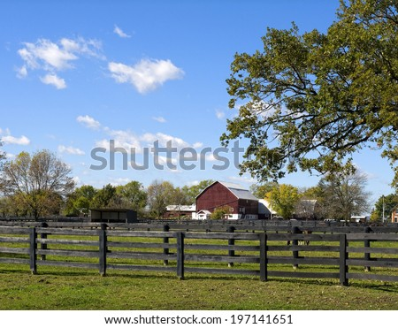 Fenced in horses graze in the pasture in front of the weathered red barn. - stock photo