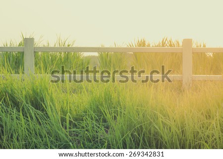fenced ranch at sunrise - stock photo