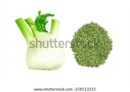 Fennel bulb and seeds isolated on white - stock photo