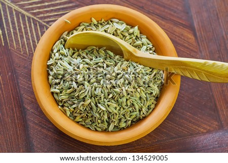 Fennel in bowl - stock photo