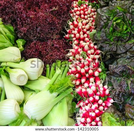 Fennel, lettuce, and radishes at the market, Borough Market, London, England - stock photo