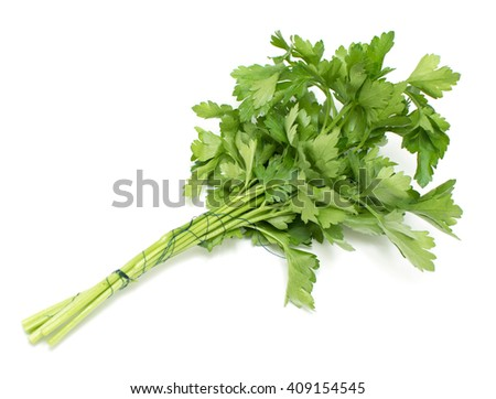 fennel salad greens parsley on a white background