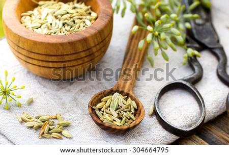 Fennel seeds in wooden spoon outdoor shot - stock photo