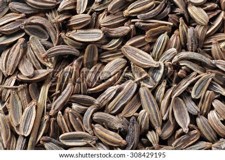 Fennel seeds, macro - stock photo