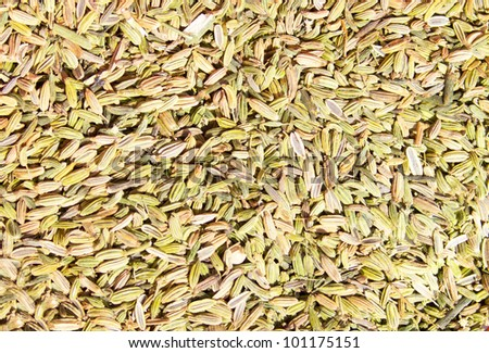 Fennel seeds the texture background.