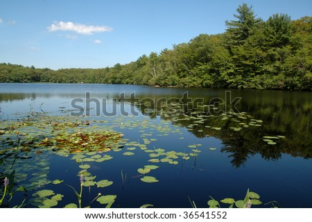 Fernwood Lake, Gloucester, MA, on a summer day