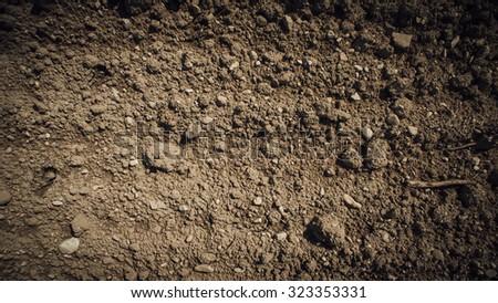 Fertile humus soil in the farmland field, texture close up - stock photo