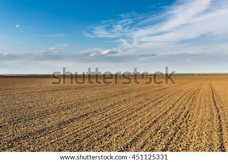 Fertile land, arable crop field