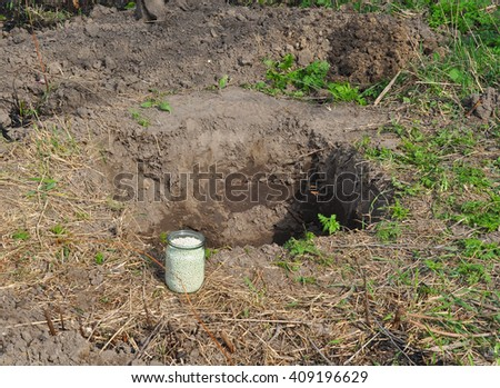 Fertilizer for planting tree. Chemical fertilizer for planting tree hole. Tree fertilization. Tutorial, step by step. - stock photo