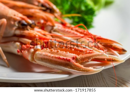 Feshly cooked scampi on a plate - stock photo
