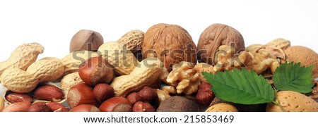 Festive banner of mixed whole fresh nuts in their shells including almonds, hazelnuts, brazil nuts, peanuts and walnuts both shelled and whole with green leaves on white with copyspace, closeup view - stock photo