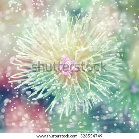 Festive Christmas background, snowflakes and Christmas tree in soft focus