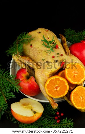 Festive Christmas duck baked with apples and mandarins - stock photo