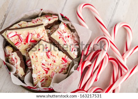 Festive display of homemade chocolate peppermint bark with bunch of candy canes - stock photo