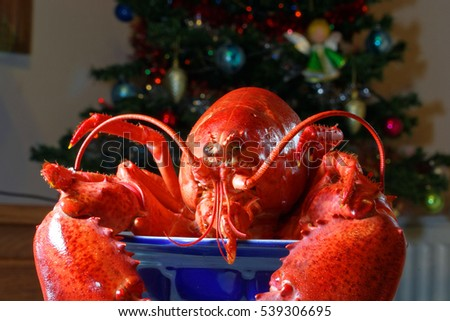 Festive meal, lobster