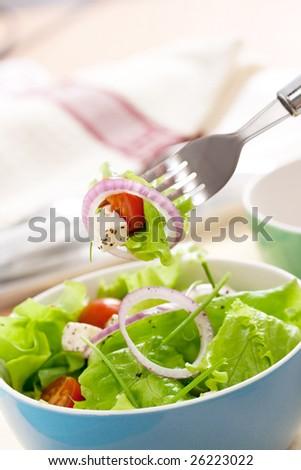 feta cheese salad with fresh greens - stock photo