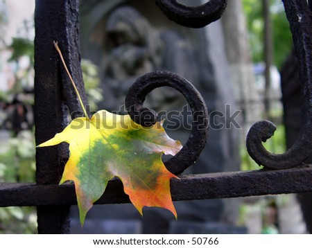 Feuille d'automne