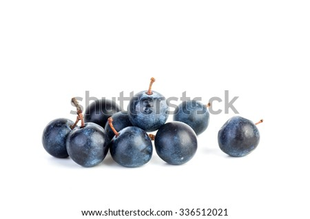 Few blackthorn berries isolated on white background - stock photo