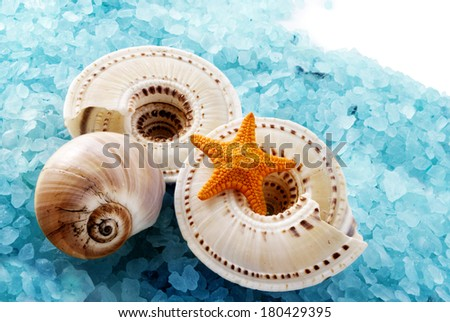 Few marine items on blue seasalt over white background. - stock photo