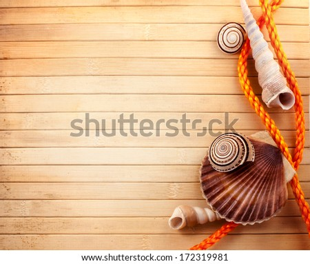 Few marine items over wooden background.