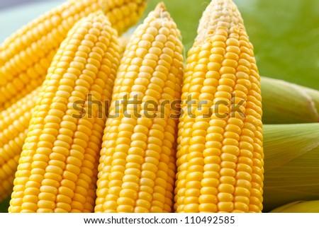 Few yellow corn - stock photo