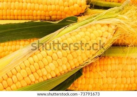 Few yellow corn