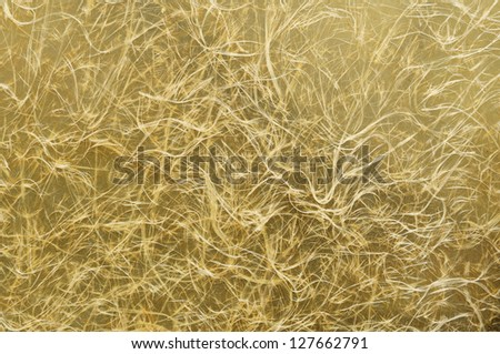 Fiberglass Stock Photos, Images, & Pictures | Shutterstock