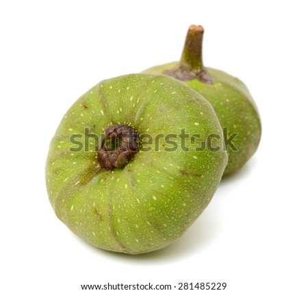 Ficus auriculata isolated on white background