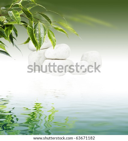 Ficus leaves and white stones in water reflection - stock photo