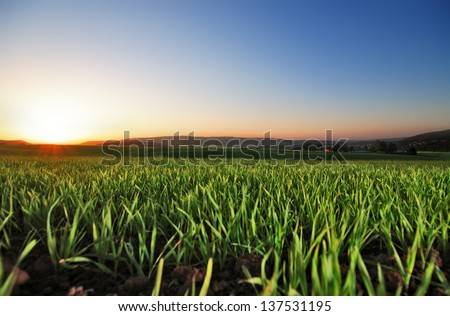 field 04 - stock photo
