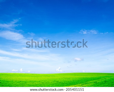 field  - stock photo